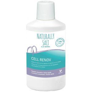 Bayrol Détartrant pour cellule d'électrolyseurs au sel Cell Renov de (1 litre)