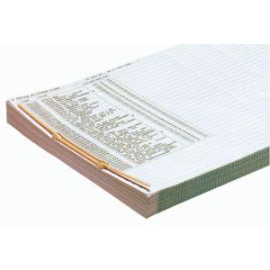 Fast 1087X100 - Boîte de 100 relieurs à archives, écartement 77 mm, épaisseur 90 mm