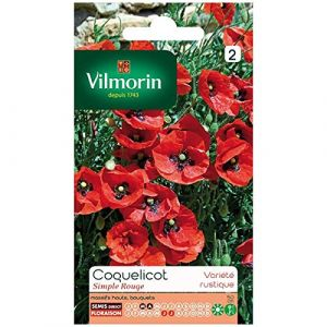 Vilmorin Coquelicot simple rouge rouge