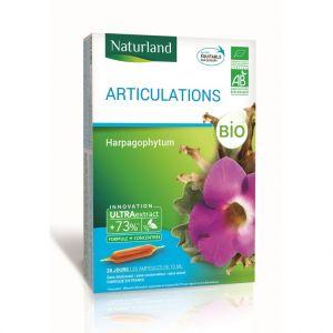Harpagophytum bio en format 20 x 10 ml