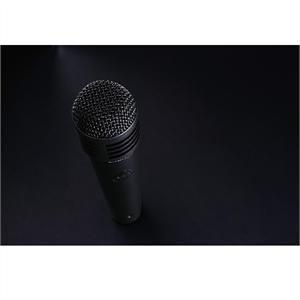 Lewitt MTP 440 DM - Microphone dynamique cardioide XLR