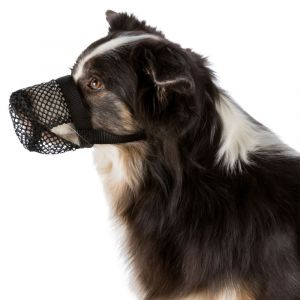 Trixie Protection anti intoxication noire en polyester pour chien Taille S-M