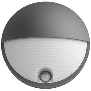 Philips Capricorn Anthracite Lumière Blanc Froid - Luminaire Extérieur LED avec Détection