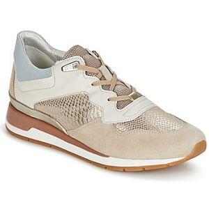Geox Chaussures D SHAHIRA B