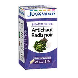 Juvamine Artichaut radis noir - Comparer avec Touslesprix.com