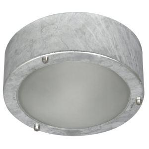 Ranex 5000.314 - Applique/plafonnier extérieur Dublin galva et verre dépoli