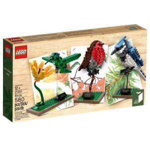 Lego 21301 - Ideas : Oiseaux