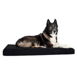 Back On Track Matelas pour chien 100 × 120 cm