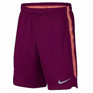 Nike Fc Barcelona Dry Squad Shorts Junior