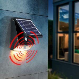 Esotec Spot mural à capteur solaire 500 lm applique murale d?extérieur jardin 102270