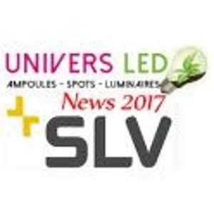 SLV 508451 2 G11 55 W Lampe Fluo compacte, blanc