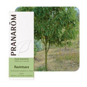 Pranarôm Huile essentielle racintsara (cinnamomum camphora) - 10 ml
