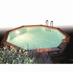 Ubbink 7504611 - Kit halogène-Spot 100 W pour piscine