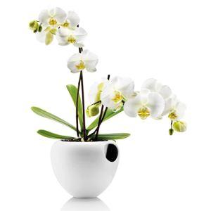Eva Solo Pot à orchidée en céramique avec réserve d'eau