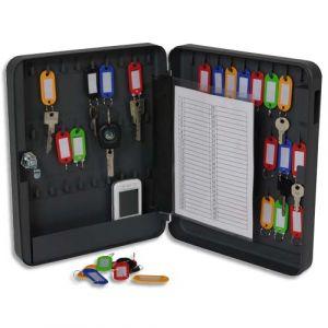Pavo Armoire à clés serrure clé capacité 54 clés L24 x H30 x P6 cm gris foncé