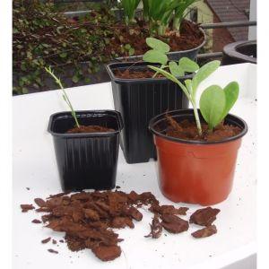 Nature Lot de 8 pots bouturage polystyrene H7 x diam 9,5 cm - Lot de 8 pots horticoles carrés - Plastique thermoformé - Trous de drainage - Dimensions : H7 x Ø9,5 cm