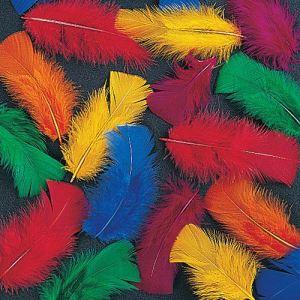 Image de Baker Ross 130 plumes colorées à coller