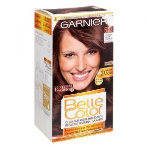 Garnier Coloration permanente Terre Soleil 523 Châtain clair - La boîte