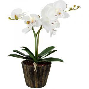 Globo Orchidée pot Á fleurs DEL éclairage fleurs feuilles salle de séjour luminaire
