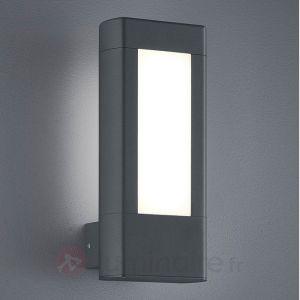 Image de Trio Applique extérieure 2 lampes LED Rhine Anthracite