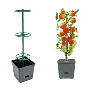 Verdemax Pot de fleurs avec tuteur