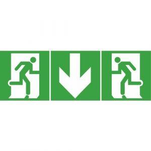 Legrand Étiquettes d'évacuation pour BAES mobilité réduite flèches bas