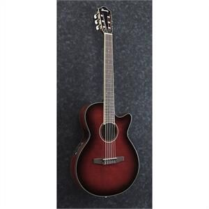 Ibanez AEG24NII - Guitare électro-acoustique série AEG