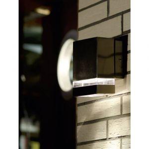 Lutec Applique murale LED extérieure ECO-Light Focus ST 6051 LED LED intégrée acier