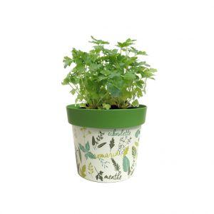 Poetic Pot caméléon aromatique vert Ø 16 cm