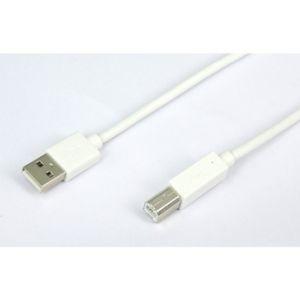 Temium Câble imprimante USB A vers USB B 1,8m