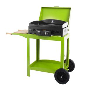 Barbecue Au Gaz Butane Comparer 7 Offres