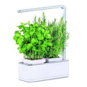 Kitchen gardening Jardin d'intérieur Viviana avec Kit de démarrage et puce NFC