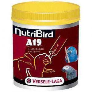 Versele Laga NutriBird A19 pour aras, eclectus et perroquets