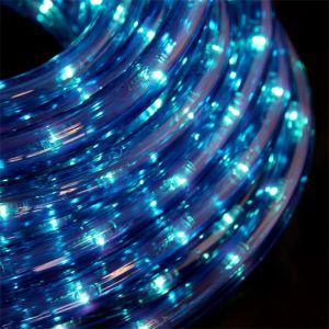 Blachère illumination Kit fil lumineux 160 LED (8 m)