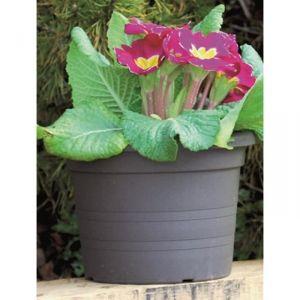 Cilindro 8,75 L - Pot de fleurs rond Ø30 cm
