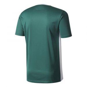 Adidas Entrada 18 T-Shirt - Mixte Enfant - Vert (Collegiate Green/White) - 11-12 ans