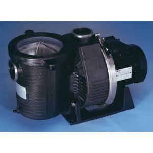 Pentair 090719 - Pompe Ultra Flow 1 cv monophasée