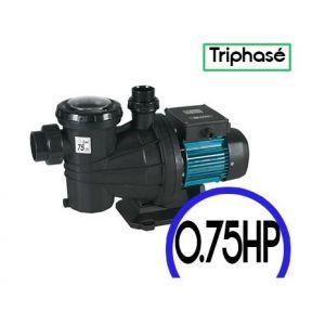 Espa SILVER 15 T - Pompe de filtration piscine
