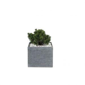 Pot carré bas STREAM S/4 anthracite H.31 cm