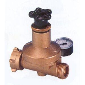 Clesse Manodétendeur à pression réglable pour bouteille gaz Propane - Raccordement entrée : E. 20x150 - Sortie : M. 20x150