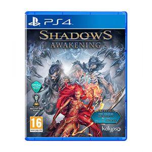 Shadows : Awakening [PS4]