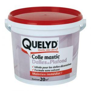 Quelyd Colle Dalle Plafond 7Kg - 30601684