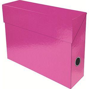 Exacompta 89924E - Boîte transfert IDERAMA en carte 22/10e, dos de 90, coloris rose