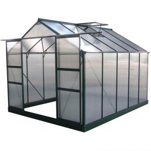 Viva Green Dahlia - Serre jardin polycarbonate 7,67 m²