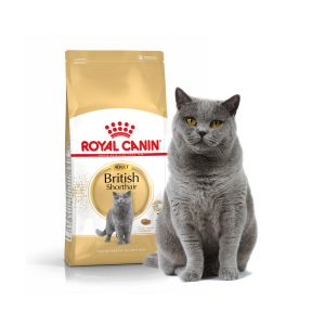Royal Canin Feline Breed Nutrition British Shorthair 34 Adult - Sac 10 kg
