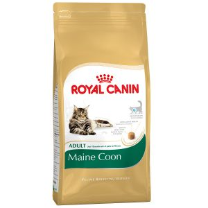 Royal Canin Feline Breed Nutrition Maine Coon 31 Adult - Sac 400 g