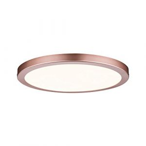 Paulmann Dalle LED 22 W blanc chaud Atria 70872 or rose