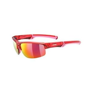 Uvex Lunettes Sportstyle 226