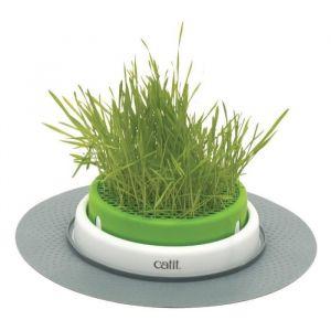 Catit Jardin d'herbe à chat Senses 2.0