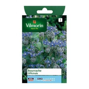 Vilmorin Bourrache Officinale - Sachet graines